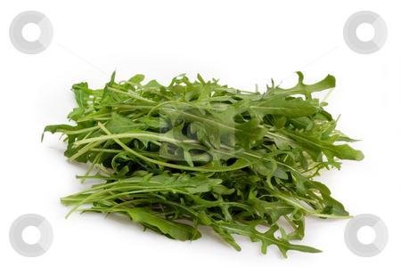 Rucola stock photo, Fresh Rucola Salad on bright background by Birgit Reitz-Hofmann