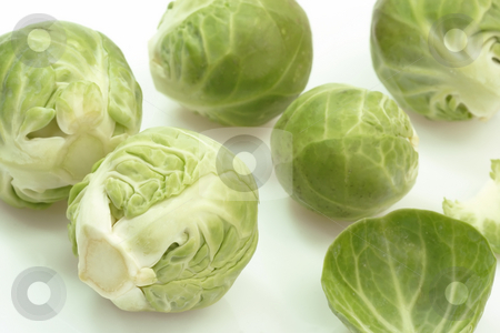 Brussels Sprouts stock photo, Brussels Sprouts in Detail on bright background by Birgit Reitz-Hofmann