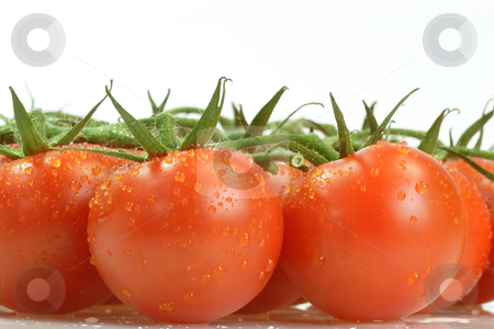 Tomatoes stock photo, Fresh tomatoes on bright background by Birgit Reitz-Hofmann