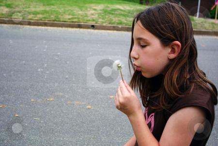 Danedion stock photo, Little girl blowing on a dandelion by Sandra Fann