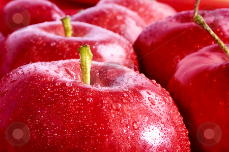 Red Apples stock photo, Studio shot of group of red apples, focus on foreground by iodrakon