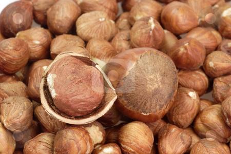 Hazelnuts stock photo, Hazelnuts in Detail as background by Birgit Reitz-Hofmann