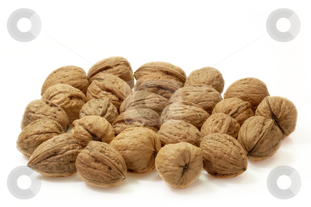 Walnuts stock photo, Fresh Walnuts on bright background by Birgit Reitz-Hofmann