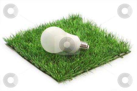 Energy saving lamp stock photo, Energy saving lamp on a grass meadow on bright background by Birgit Reitz-Hofmann