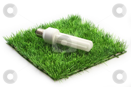 Energy saving lamp stock photo, Energy saving lamp on a grass meadow on bright background by Birgit Reitz-Hofmann