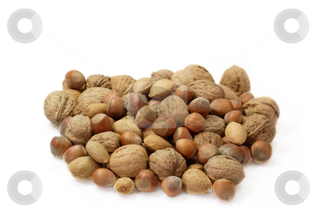 Nuts stock photo, Assortment of nuts on bright background by Birgit Reitz-Hofmann