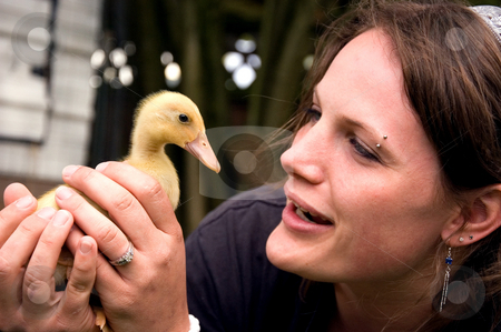 Young Attractive Woman Holding Duckling stock photo, This young attractive woman is holding closely a yellow baby duck for a very sweet photo. by Valerie Garner