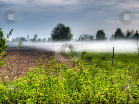 Fogginess in the field stock photo, Morning landscape on the field with mist, somewhere on the continent. by Sinisa Botas