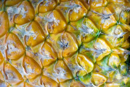 Pineapple stock photo, Dettail ripe vivid pineapple textured skin closeup by Francesco Perre