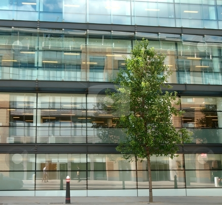 Glass facade and tree stock photo, Glass office and tree by Juraj Kovacik