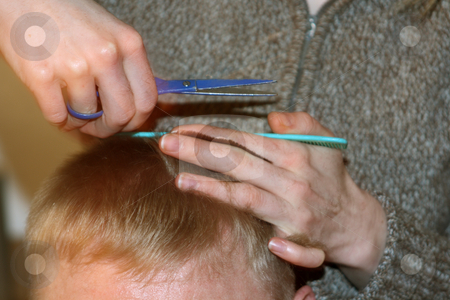 Hair cutting stock photo, Hair cutting. Hair stylist at work with scissors by Birgit Reitz-Hofmann