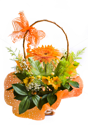 Gerbera stock photo, Orange gerbera bouquet in basket over white by Desislava Dimitrova