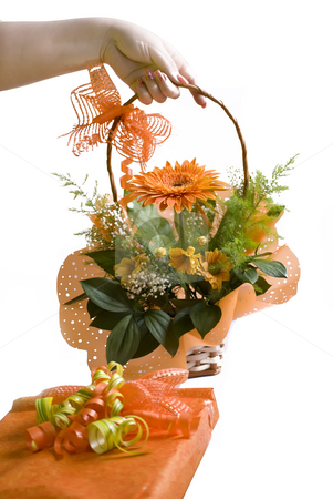 Gerbera stock photo, Hand giving orange gerbera bouquet in basket over white by Desislava Dimitrova