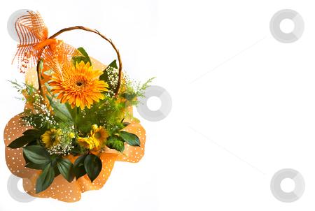 Gerbera stock photo, Orange gerbera bouquet in basket over white by Desislava Dimitrova