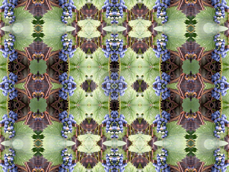 Grapes - Background Pattern stock photo, Grapes - Background Pattern by Dazz Lee Photography