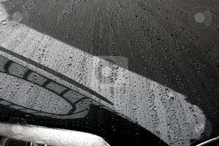 Rain Reflections stock photo, Rain drop on metal with reflections by Terise Slotkin