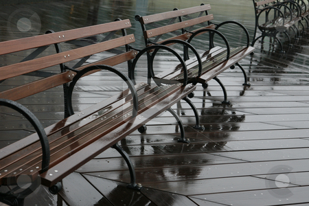 Benches in Rain stock photo, Benches in Rain by Terise Slotkin