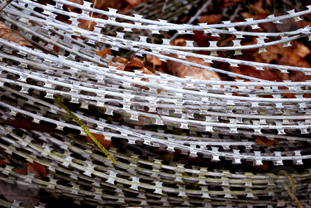 Barbed wire stock photo,  by Koter