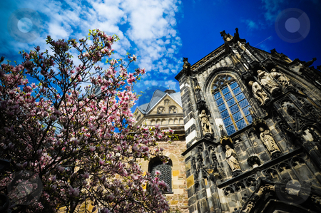 Aachen Cathedral stock photo, Looking up at the Aachen Cathedral and flowering tree by Jaime Pharr
