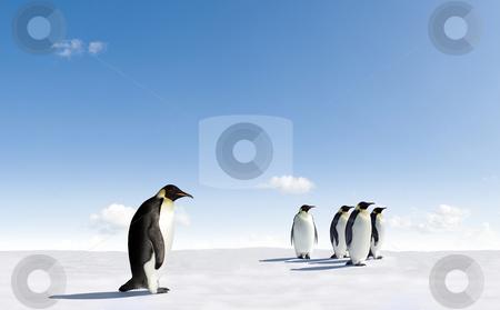 Emperor Penguins stock photo, Five Emperor Penguins in Antarctica by Jan Martin Will