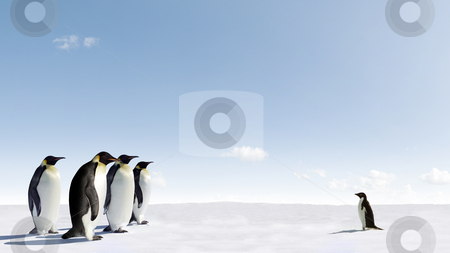 Courage stock photo, Adelie penguins faces a group of Emperor penguins by Jan Martin Will