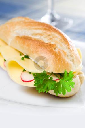 Sandwich stock photo, Sandwich on a plate by Jan Martin Will
