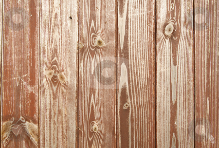 Close up of the pattern on a wooden door. stock photo, Close up of the pattern on a wooden door. by Stephen Rees