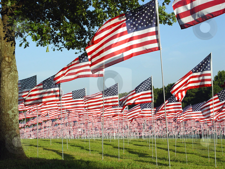 Freedom Flags stock photo, Kennesaw State Park Georgia over 3000 flags were put up to remember all that died 0n 9/11 in New York by Jack Schiffer
