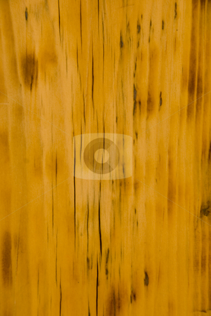 Wood stock photo, Close up shoot of a rustic wood background by Wolfgang Zintl