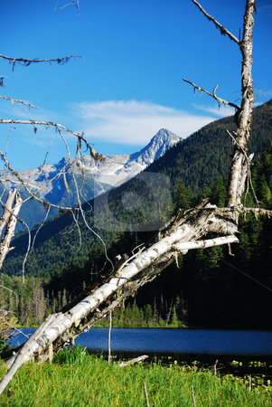 Coast mountains stock photo, Coast mountains and lake in canada british columbia by Wolfgang Zintl