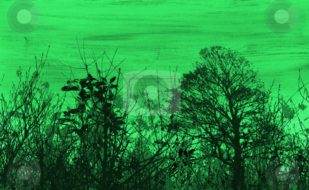 Grunge foliage stock photo, Grunge foliage background by Kirsty Pargeter