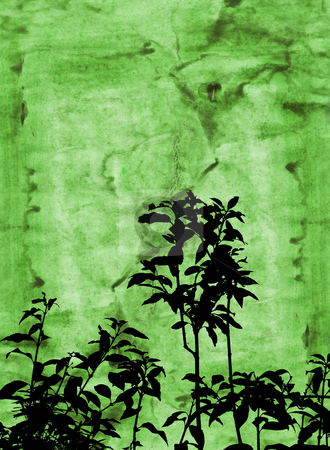 Grunge foliage stock photo, Silhouette of foliage on grunge background by Kirsty Pargeter