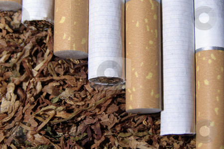 Tobacco and cigarete stock photo, Spilled tobacco and cigarete by Sergej Razvodovskij