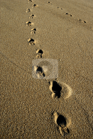 Footprints stock photo, Human footprints in the wet sand detail by Rui Vale de Sousa