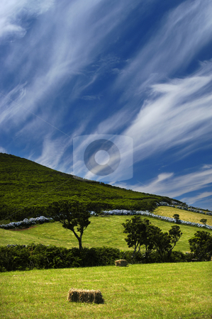 Fields stock photo, Azores typical view at the island of Sao Miguel by Rui Vale de Sousa
