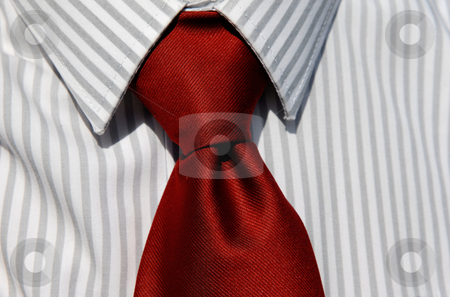 Tie stock photo, Business man tie isolated on white and grey shirt by Rui Vale de Sousa