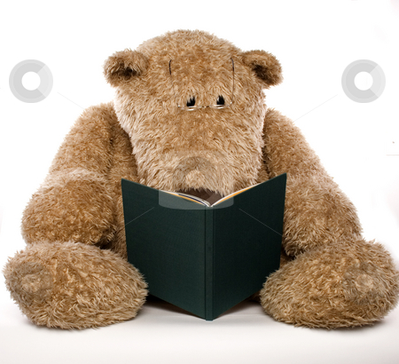 Teddybear reading a book stock photo, A stuffed teadybear reads a book with glasses by Matt Baker