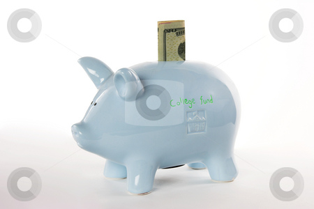 College fund piggy bank stock photo, A piggy bank full of money by Matt Baker