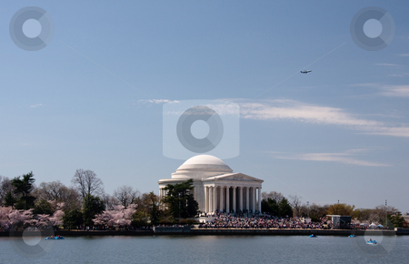 Plane taking off over Jefferson Memorial stock photo, Cherry Blossoms surround Jefferson Memorial as a plane takes off over the scene by Steven Heap