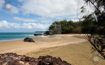 Lumaha'i beach in Kauai stock photo, View of trees and rocks at the end of Lumaha'i beach in Kauai by Steven Heap