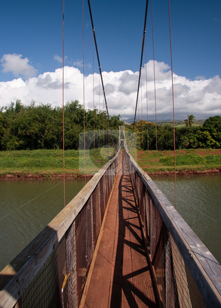 Hanapepe Swinging Bridge in Kauai stock photo, View down the walkway of the swinging suspension bridge at Hanapepe by Steven Heap