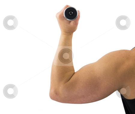 Arm with Weight stock photo, Arm with weight on a white background by John Teeter
