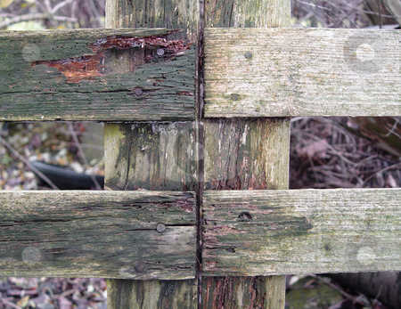 Wooden Fence stock photo,  by Kirsty Pargeter