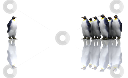 Penguins stock photo, One penguin with a group of penguins by Kirsty Pargeter