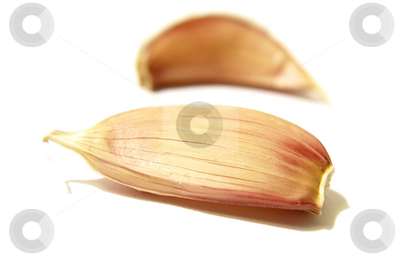 Garlic Clove stock photo,  by Kirsty Pargeter