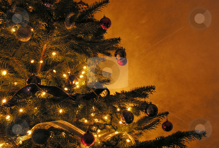 Christmas Tree stock photo,  by Kirsty Pargeter