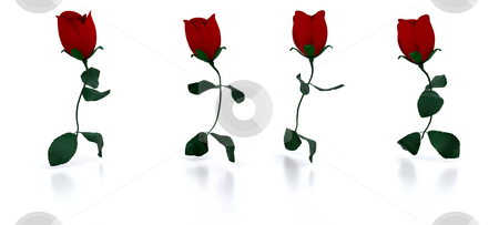 Running roses stock photo, 3D render of roses running by Kirsty Pargeter