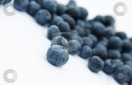 Blueberries stock photo, Close up shot of blueberries by Kirsty Pargeter