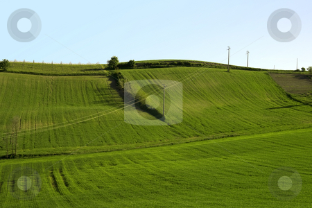 Field stock photo, A green grass field with blue sky by Fabio Alcini