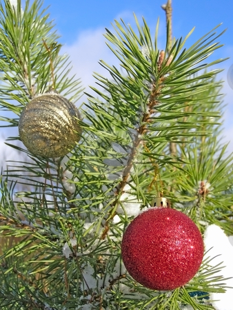 Christmas tree and sky stock photo, Decoration balls on the christmas tree outdoor by Sergej Razvodovskij